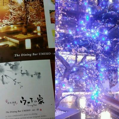 ウメ子の家 新宿東口店