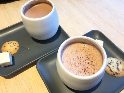 ダンデライオン チョコレート 鎌倉店