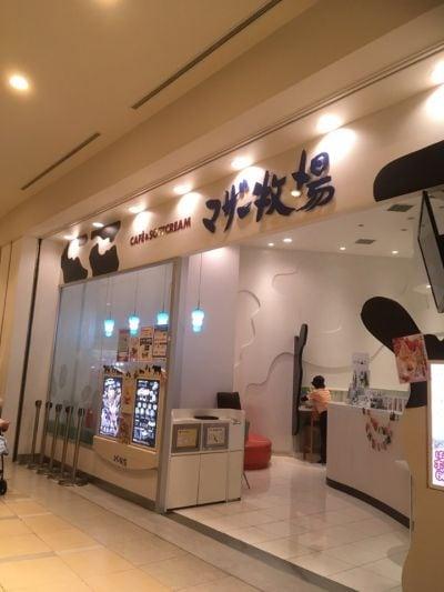 マザー牧場CAFE&SOFTCREAM ららぽーと横浜店