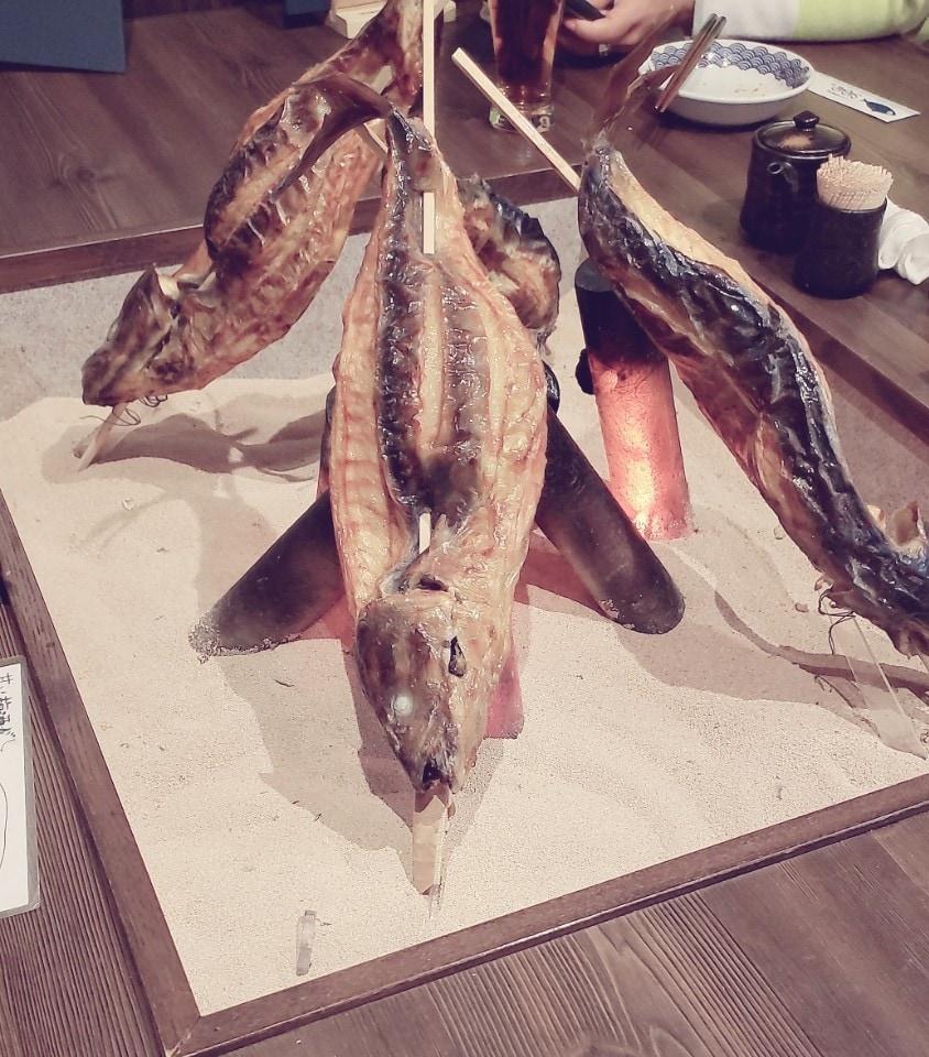 とろさば料理専門店 SABAR 阪急三番街店の口コミ