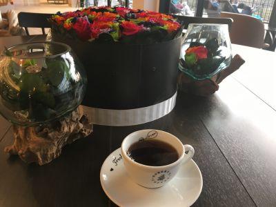 ロバーツコーヒー メッツァ店