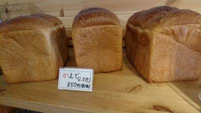 食パン専門店 a donpan 青葉台店