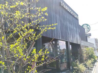 スターバックスコーヒー 多摩野猿街道店