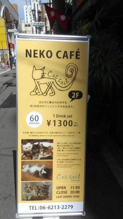 NEKO  CAFE Cat tail