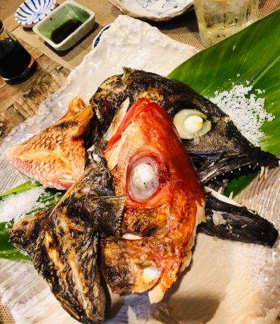 あまみの魚たち