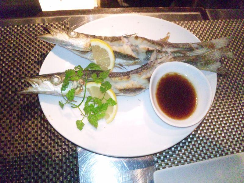 白金魚プラチナフィッシュ CHIBI