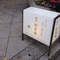 鎌倉 松原庵 欅
