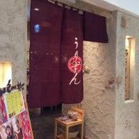 泡盛と琉球料理 うりずん 渋谷店