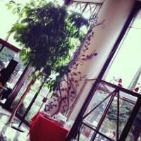 Cafe La Boheme 新宿御苑