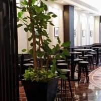 エクセルシオールカフェ ホテルサンルート赤坂店の口コミ