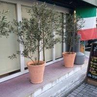 イタリア料理 IL MITZ イルミッツの口コミ