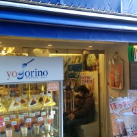 yogorino 吉祥寺井の頭公園前店