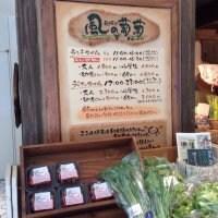 農場レストランモクモク 風の葡萄 名古屋ラシック店