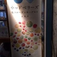 生フローズンヨーグルト woodberry's ウッドベリーズ 吉祥寺本店