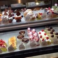 Sweets Wonderland Aralia