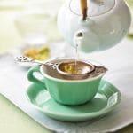 Tokyo Tea Lover